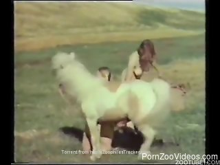 Old-timey babes enjoying this pony's perfectly-sized cock
